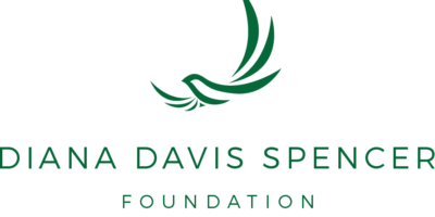 DDS Foundation Logo